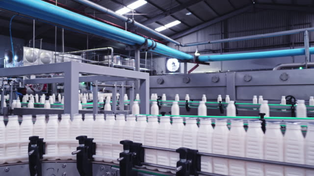 milk bottles making journey to the packaging sections at a dairy factory - conveyor belt stock videos & royalty-free footage