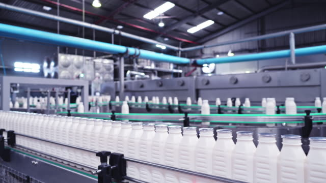 milk bottles making journey to the packaging sections at a dairy factory - dairy product stock videos & royalty-free footage