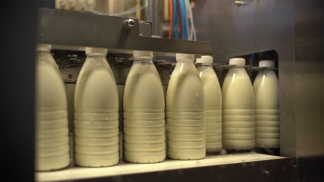 milk factory - milkman stock videos & royalty-free footage