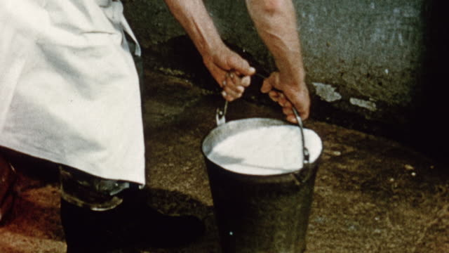 1975 montage milk from cow being weighed in a bucket and recorded in a daily record book / united kingdom - dairy product stock videos & royalty-free footage