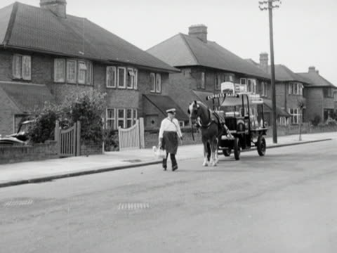 a milkman crosses a quiet suburban street to deliver milk his horse follows after him pulling the dairy cart and stops at the pavement edge - doppelhaus stock-videos und b-roll-filmmaterial