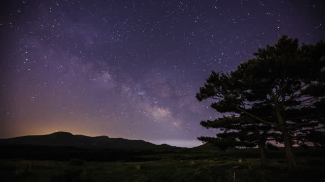 milky way above mt hallasan and a pine tree at jeju island - pinaceae stock videos & royalty-free footage