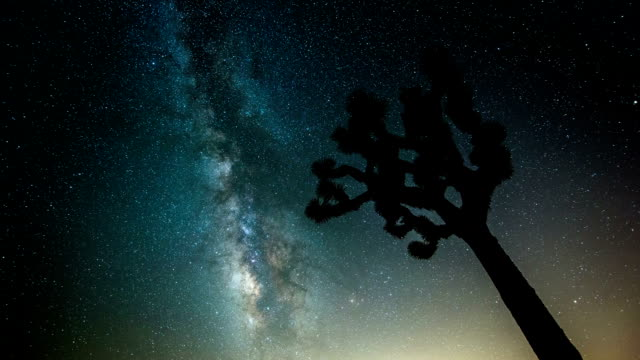 TIME LAPSE: Milky Way and Joshua Tree