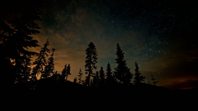 Milky way and silhouette of tall trees forest til dawn with Mt. Hood and faint Aurora Borealis northern lights