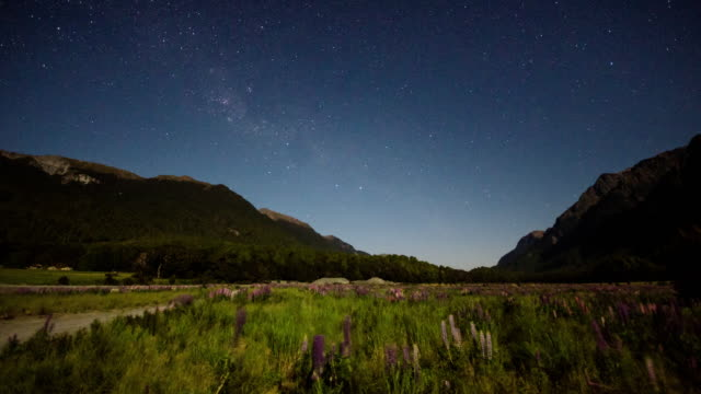 Milky way and star with galaxy Time Lapse Movement in fiordland national park , new zealand