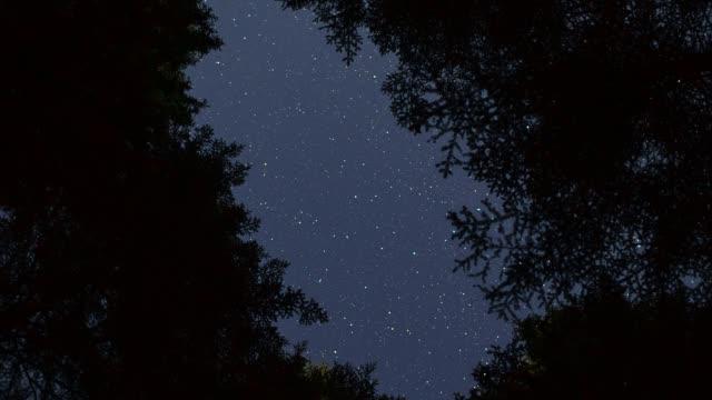 milky way, croatia - 流星点の映像素材/bロール