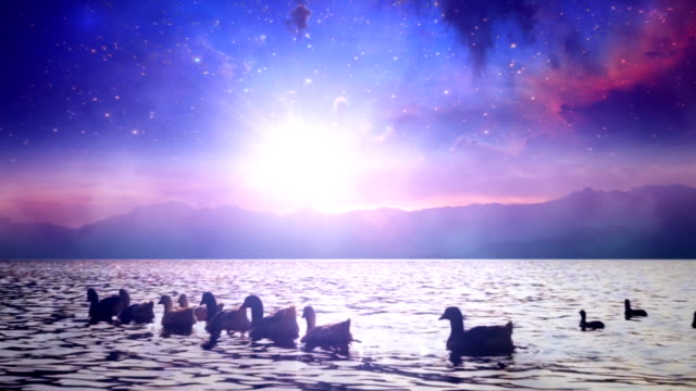 Milky Way Galaxy over lake with ducks