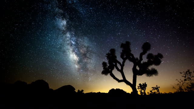 time lapse: milky way in desert - joshua tree national park stock videos & royalty-free footage