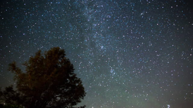 milky way night sky - above the treetops - meteor stock videos & royalty-free footage