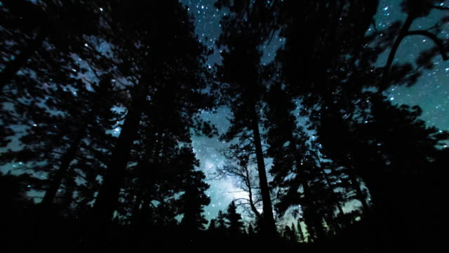 milky way rising - two shots - sequoia national park stock videos & royalty-free footage