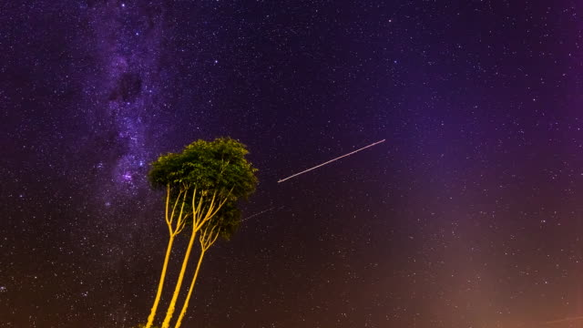 vídeos de stock, filmes e b-roll de milky way timelapse at lamington national park with a tree, queensland, australia in 4k - inclinação para cima