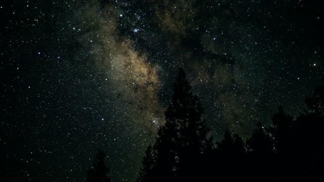 松の木と天の川 - 流星点の映像素材/bロール