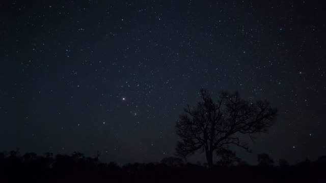 Milky Way,Time lapse, Surin, Thailand