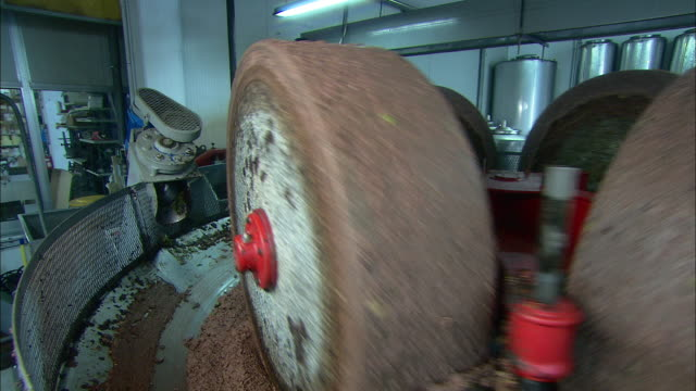 mill for the olive oil production - sunflower oil video stock e b–roll