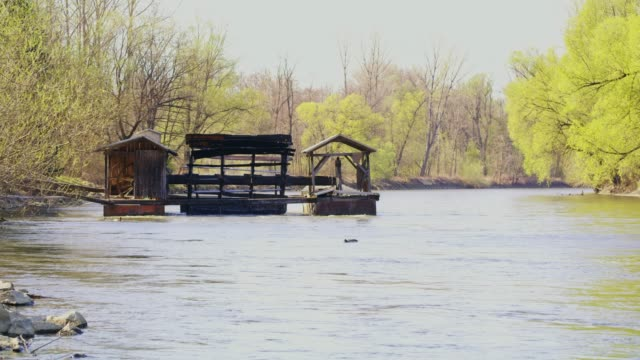 mill on tranquil sunny river, real time - watermill stock videos & royalty-free footage