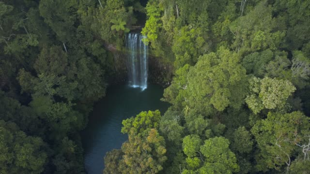 millaa millaa waterfall qld - falling water stock videos & royalty-free footage