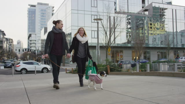 millennial couple walking their dog in the city - tracking shot stock videos & royalty-free footage