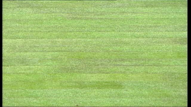 cardiff millennium stadium millennium stadium with new turf laid gvs seating areas of stand / men working gvs pitch - millennium stadium stock videos & royalty-free footage