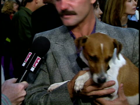 milo the dog chewing reporter's microphone during interview. - durra bildbanksvideor och videomaterial från bakom kulisserna