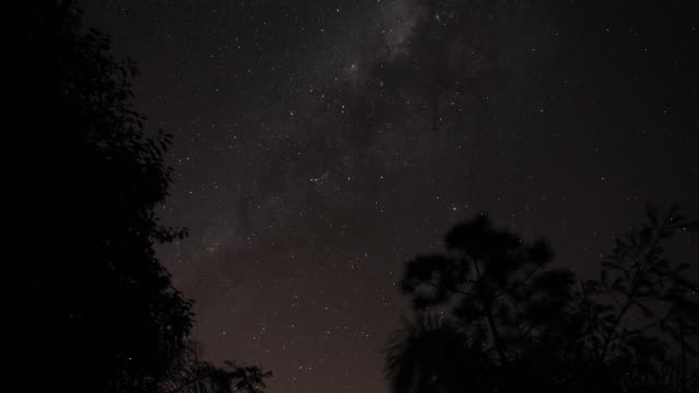 milway timelapse at brazilian rain forest - south america stock videos & royalty-free footage