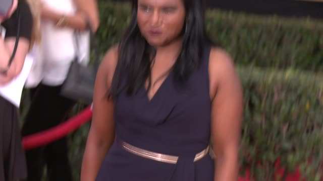 mindy kaling at 20th annual screen actors guild awards - arrivals at the shrine auditorium on in los angeles, california. - screen actors guild stock videos & royalty-free footage