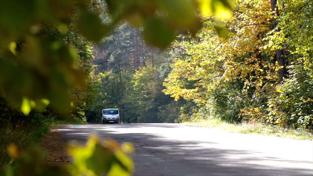 mini van driving on a road in the autumn forest. - furgone video stock e b–roll