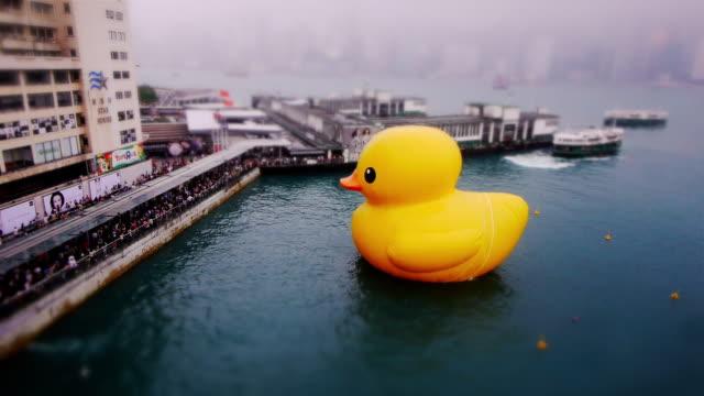 Miniature Tilt shift Ruber Duck in  Hong Kong - med shot