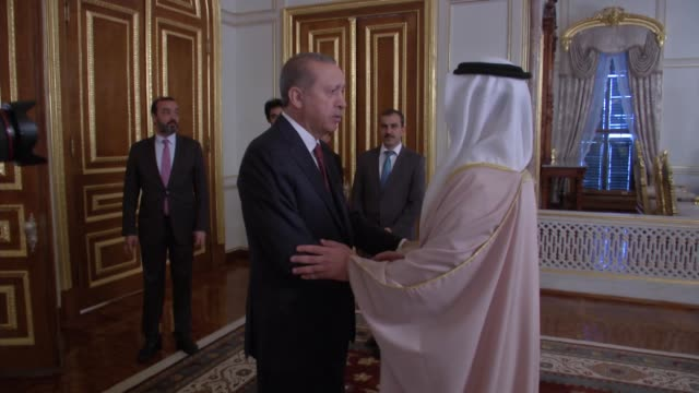 minister of foreign affairs and international cooperation of the united arab emirates abdullah bin zayed al nahyan meets turkish president recep... - 2016 stock videos & royalty-free footage