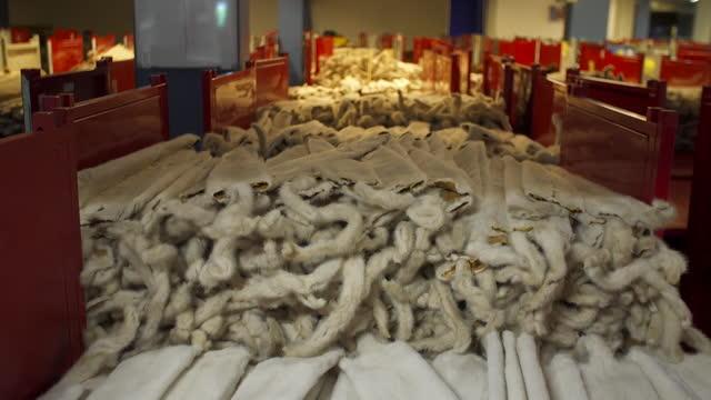 mink fur pelts, kopenhagen fur, in processing plant in denmark - animal hair stock videos & royalty-free footage