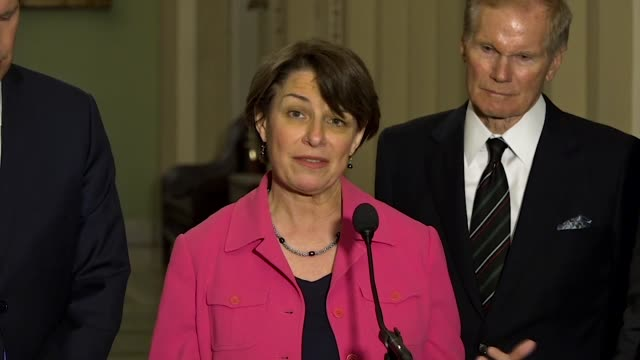 vídeos de stock, filmes e b-roll de minnesota senator amy klobuchar tells reporters at a weekly briefing after the marjory stoneman high school mass shooting that there was a change in... - legislação