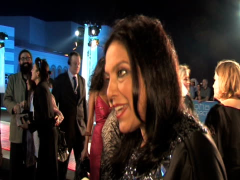mira nair on bring her film school to the region at the doha tribeca film festival 2009 - day 1 highlights at doha . - day 1 stock videos & royalty-free footage