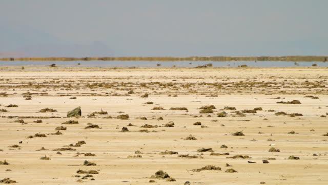mirage in the dash-e kavir desert, iran - illusion stock videos & royalty-free footage