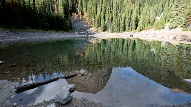 mirror lake with mountain in pine forest reflection on pond in banff national park, canada - pond stock videos & royalty-free footage