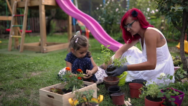mischief daughter playing with dirt while her mother replanting her mint plant into flower pot - soil stock videos & royalty-free footage