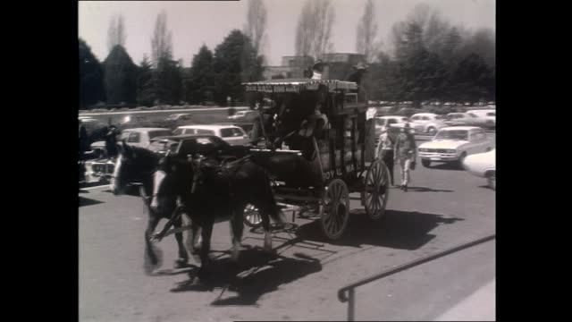 'miss world 1972' australian belinda green horse drawn cobb co coach buggy 'royal mail' with people dressed in period costume in canberra / prime... - miss world pageant stock videos & royalty-free footage