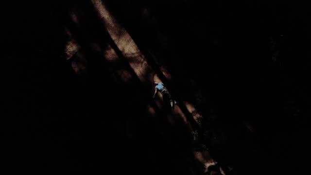 行方不明の男性が森林地帯内で死亡しているのを発見 - 自殺点の映像素材/bロール