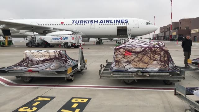 """missing pieces of the famed """"gypsy girl mosaic"""" finally arrive home in turkey's southeastern gaziantep province from the us on november 28 2018 via... - bowling green state university stock videos and b-roll footage"""