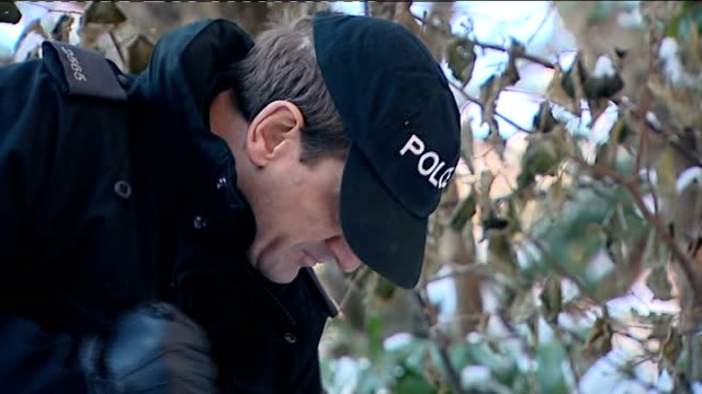 police find body general views police at scene Various shots team of police officers with sticks searching through snow and leaves along grass verge...