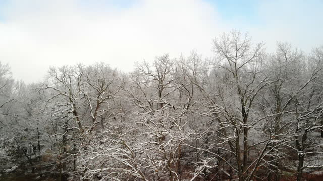 missouri ice storm residential development and street images 4k video series - bare tree stock videos & royalty-free footage