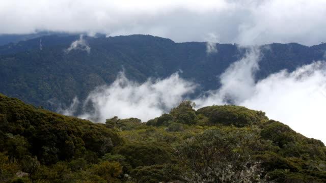 mist blowing over the paramo slopes of cerro de la muerte, talamanca  - paramo stock videos and b-roll footage