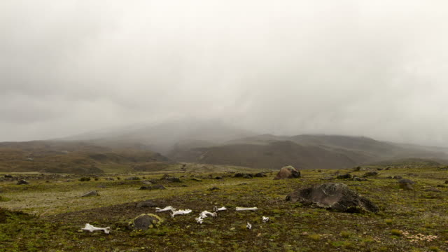 mist blowing over the slopes of cotopaxi volcano - paramo stock videos and b-roll footage