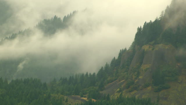 ws aerial mist covered forested mountains / oregon, united states - columbia river gorge stock videos & royalty-free footage
