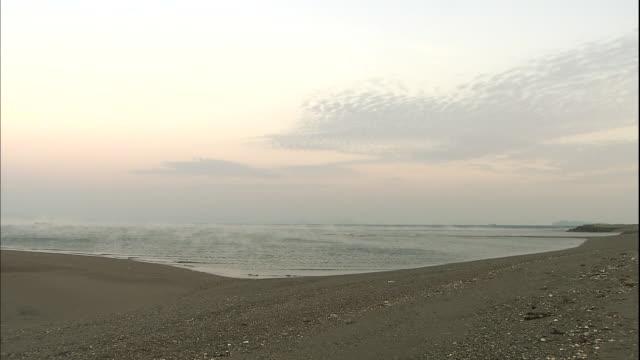 Mist drifts over a seashore.