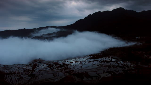 Mist drifts over rice paddy terraces at sunrise, Yuanyang, Yunnan, China