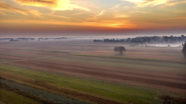 h/l mist floating over fields in the pannonian plain at dawn - prekmurje stock videos & royalty-free footage