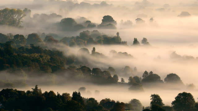 mist hangs in the valley near amberley in the south downs national park on october 3 2018 in amberly united kingdom - sustainable energy stock videos & royalty-free footage
