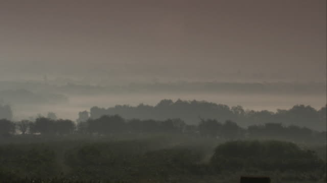 mist hangs over the countryside late in the day. available in hd. - fog stock videos & royalty-free footage