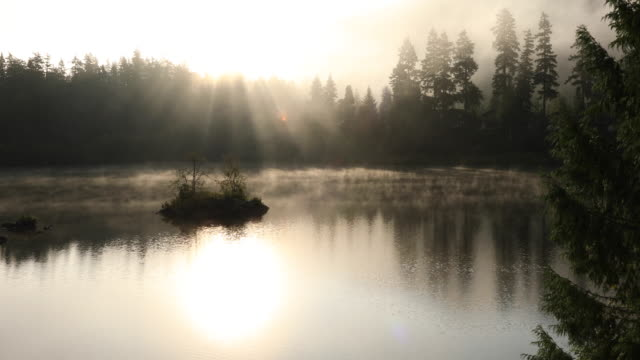 mist lifts from mountain lake at sunrise - tranquility stock videos & royalty-free footage