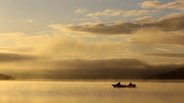 mist on a lake at dawn - angeln stock-videos und b-roll-filmmaterial