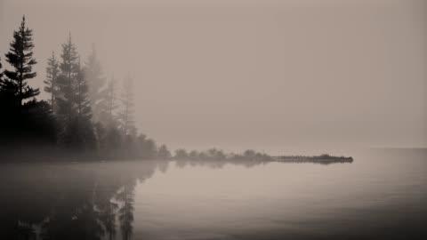 stockvideo's en b-roll-footage met mist op een meer bij dageraad met bomen. - landscape scenery